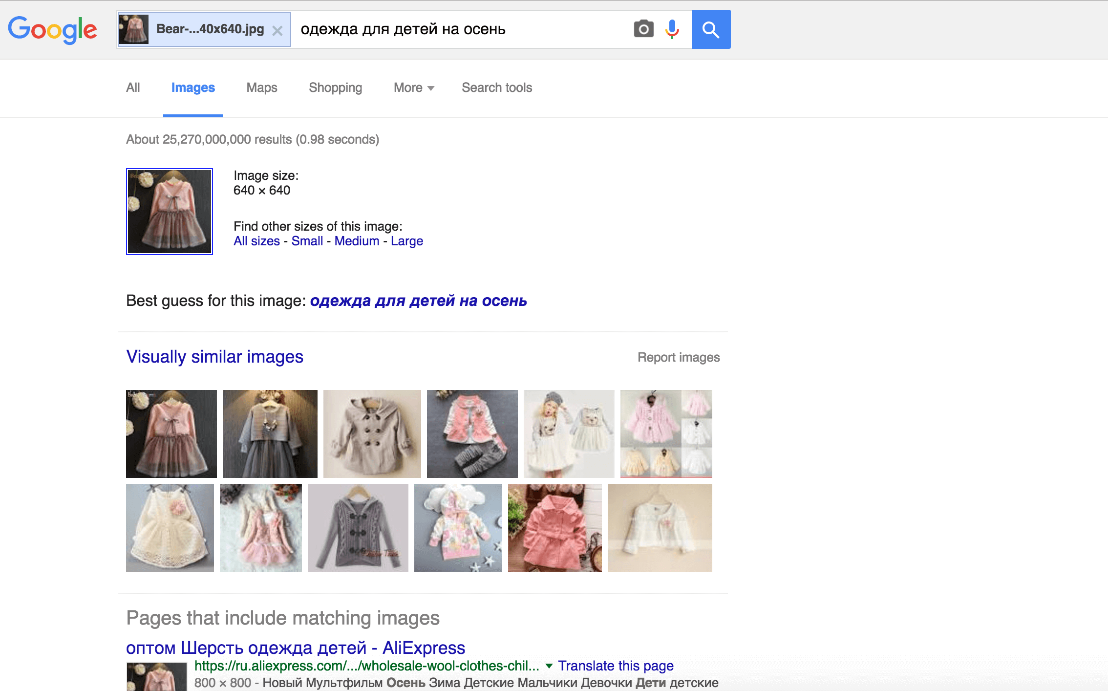 product search using google image search