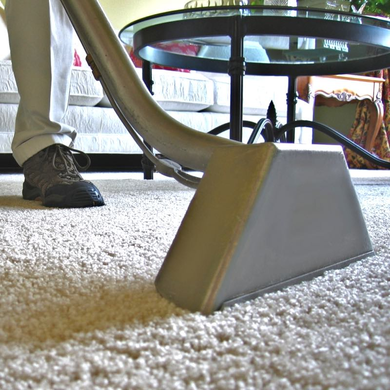 Team member cleaning a carpet.