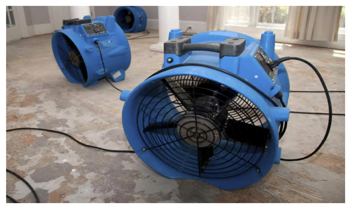 Commercial Dehumidifier - Water Damage