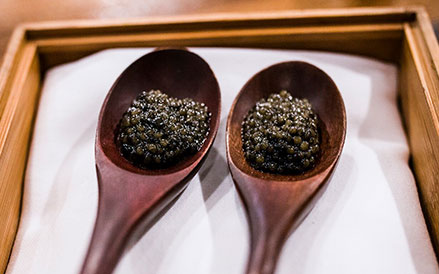 Ostera Caviar