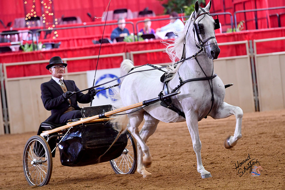 The U.S. National Arabian and Half-Arabian Championship Horse Show is like nothing else most people will ever experience in their lifetime.