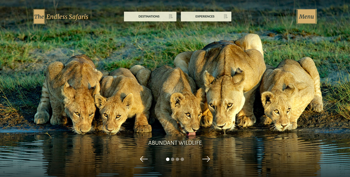 Endless Safaris travel website homepage