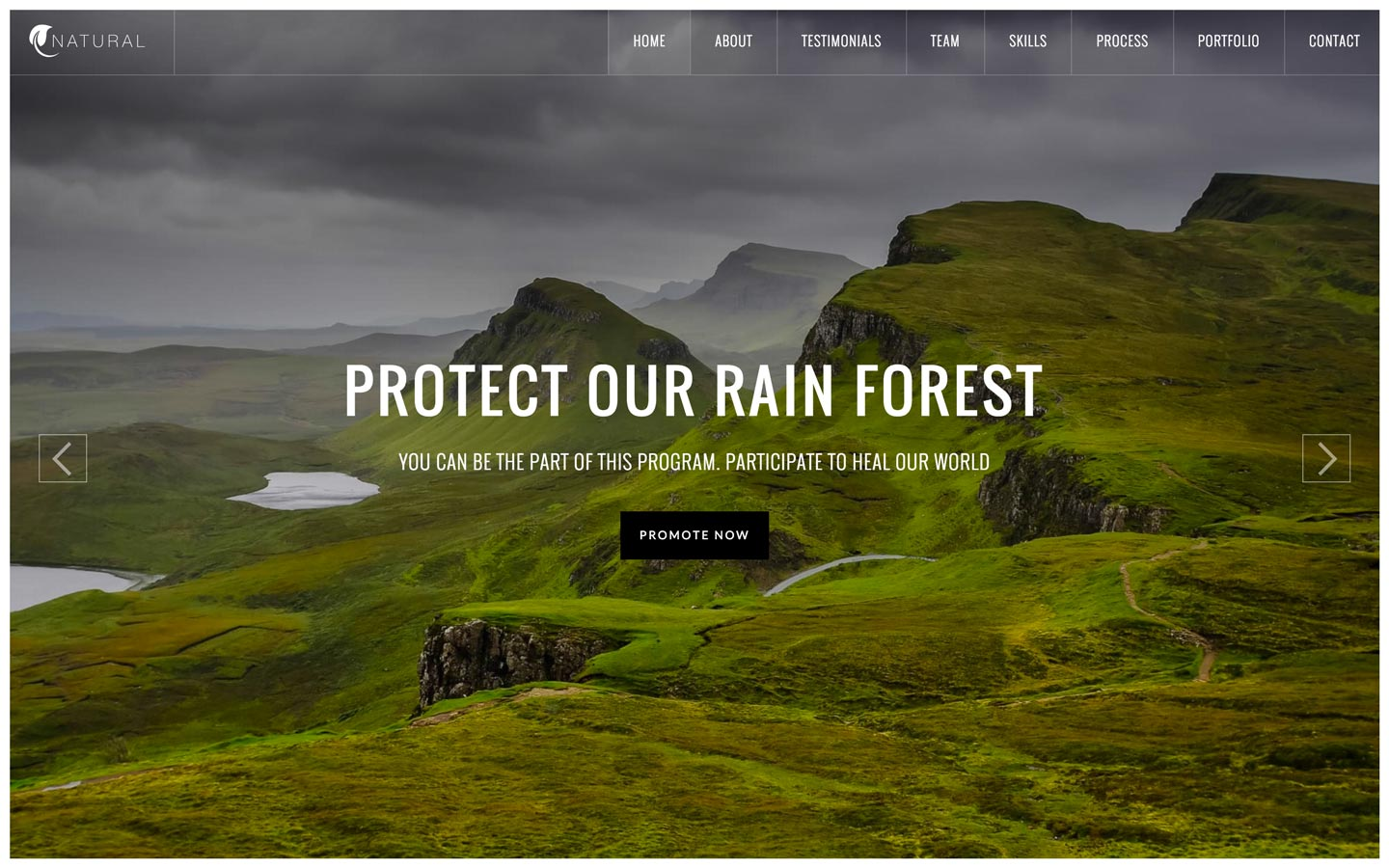 Natural – Charity Website Template