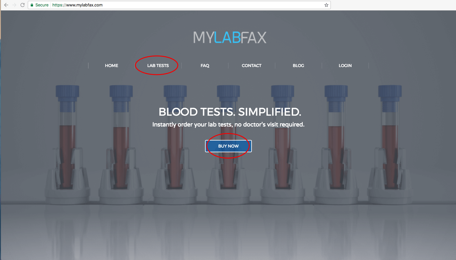 mylabfax's home page