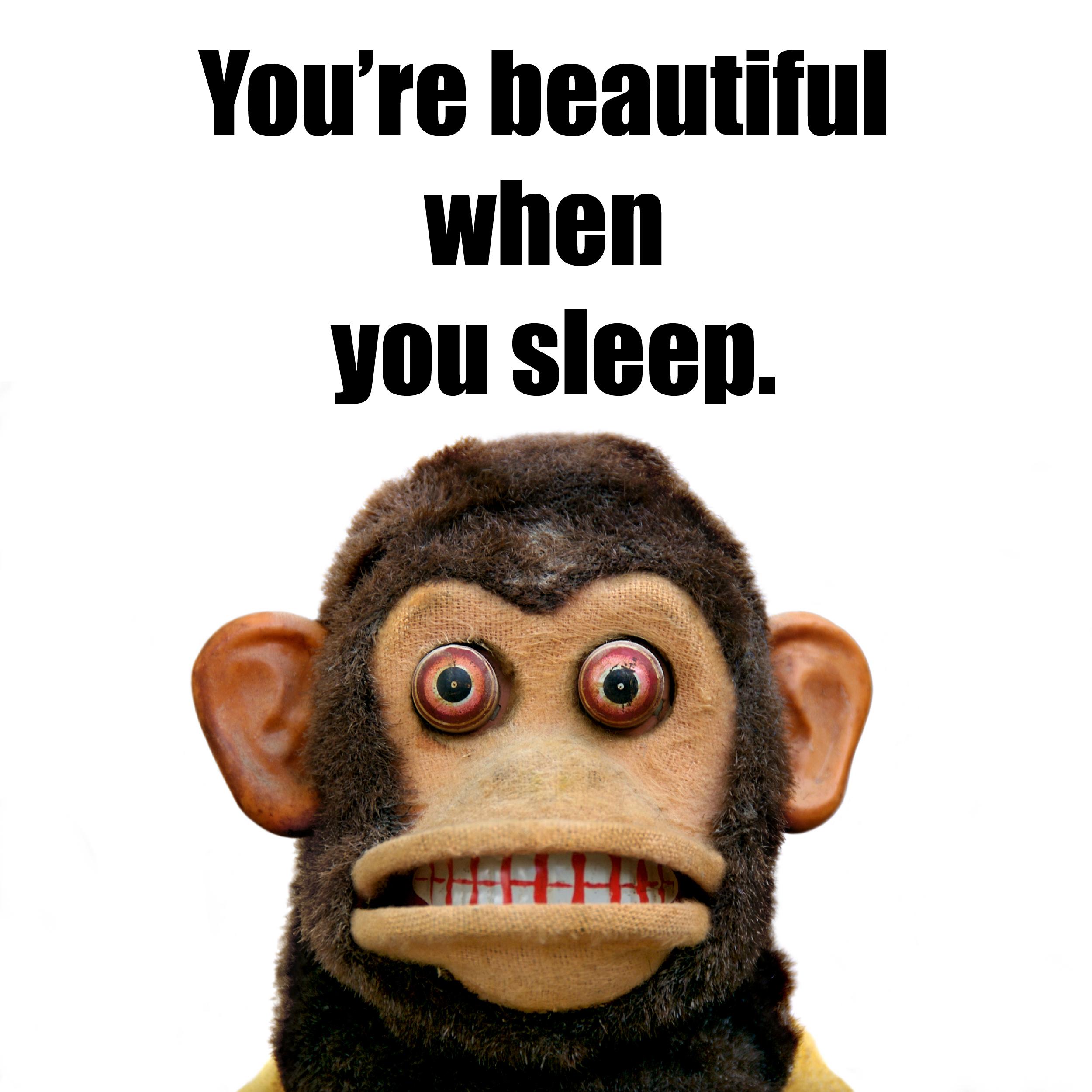 sleep musical jolly chimp