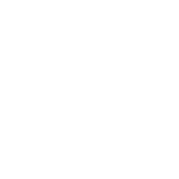 Robot Choices