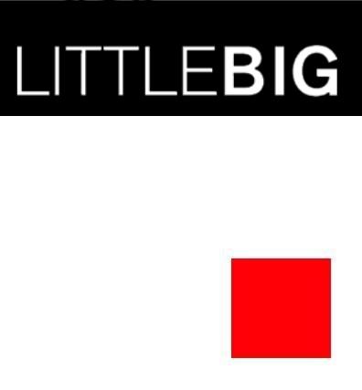 Little Big Logo