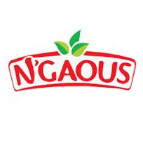 N'gaous