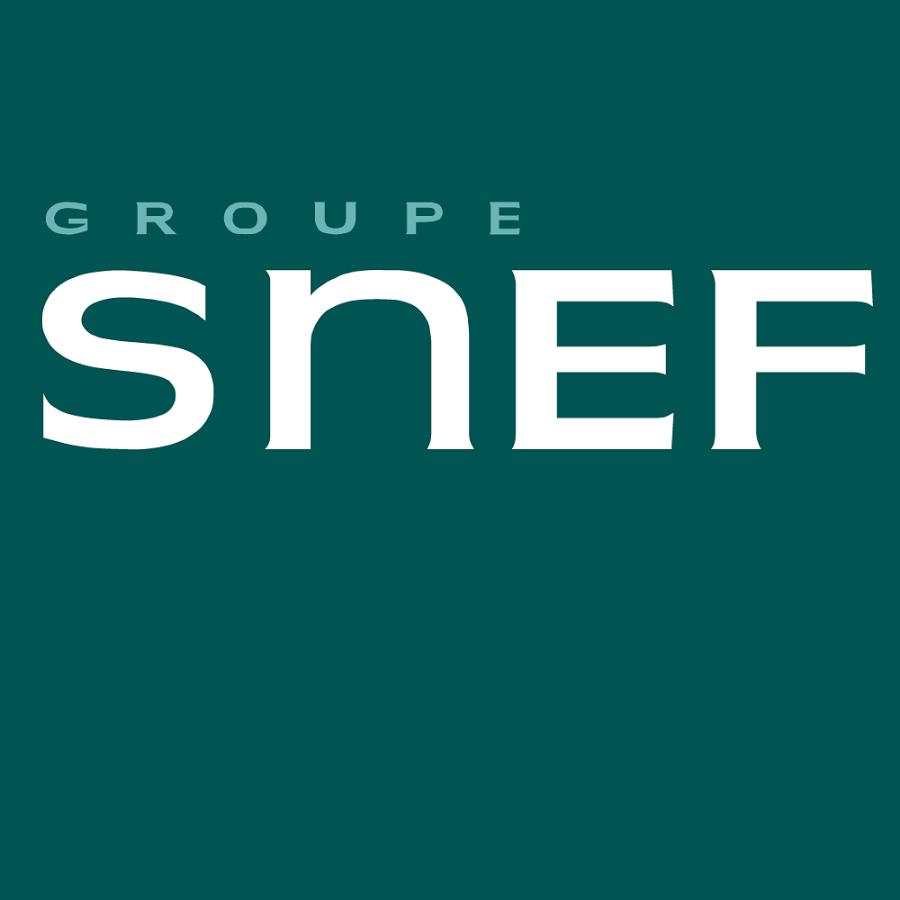 Groupe SNEF
