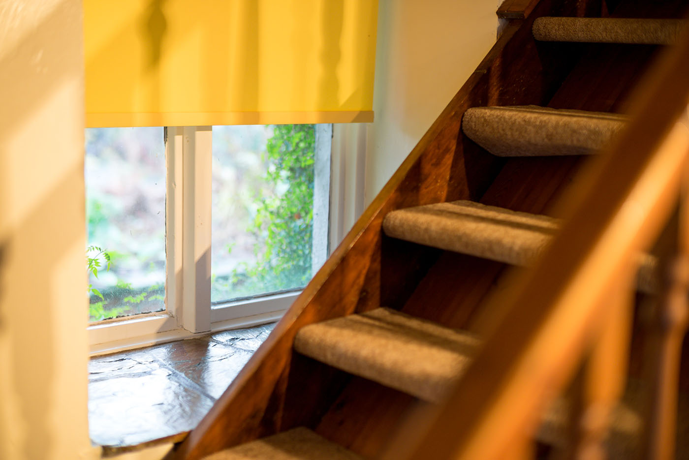 Stable stair window