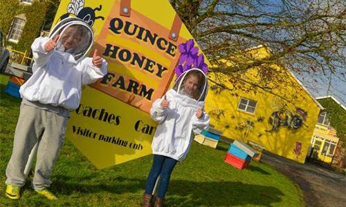 Quince Honey Farm