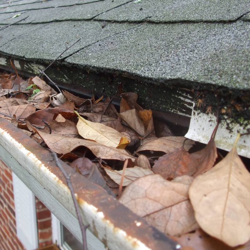 Gutter cleaning protects your home.