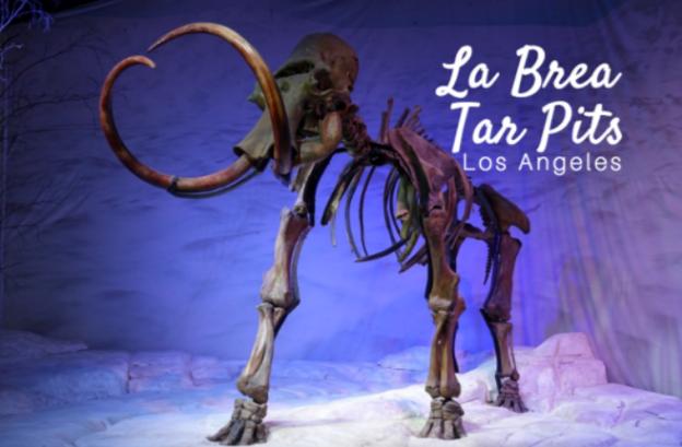 top sights to see at the la brea tar pits