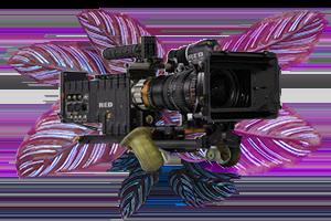 Image d'une caméro video
