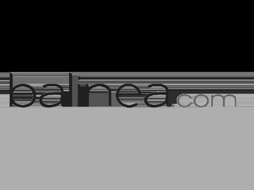 logo Balinea