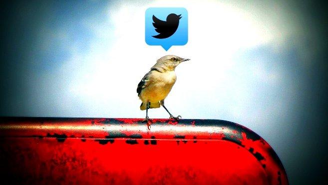 Pilcrow Twitter Bird
