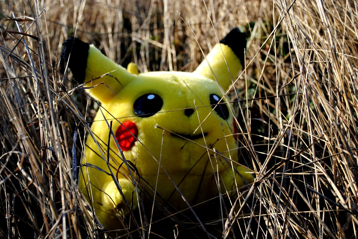 Pilcrow Pikachu Hiding