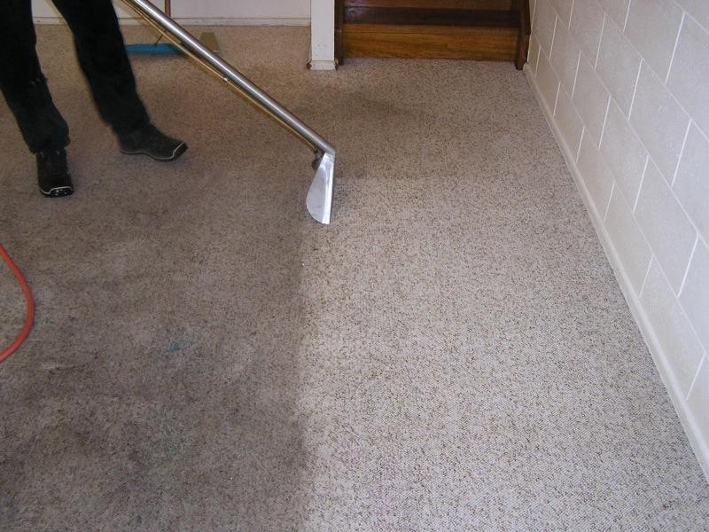 carpet-steam-cleaner-in-oakville