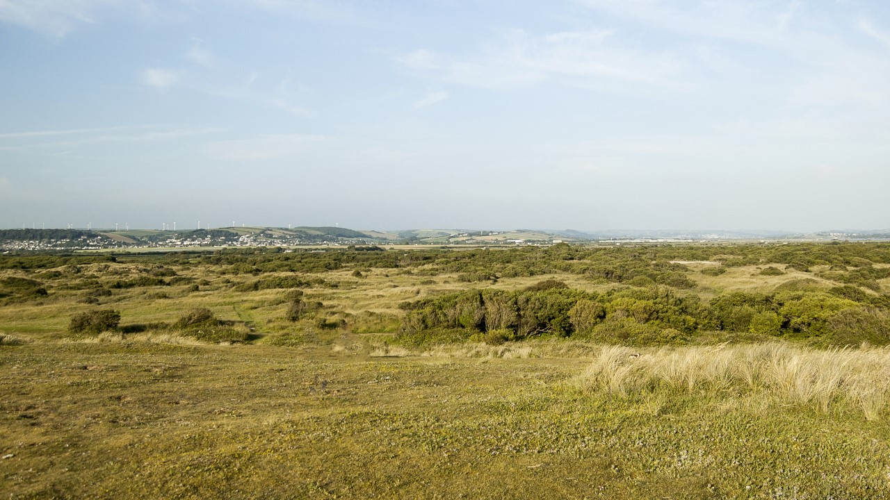 Braunton Burrows Nature reserve