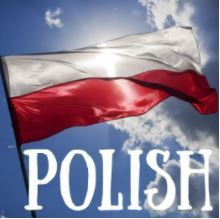 learn polish resources