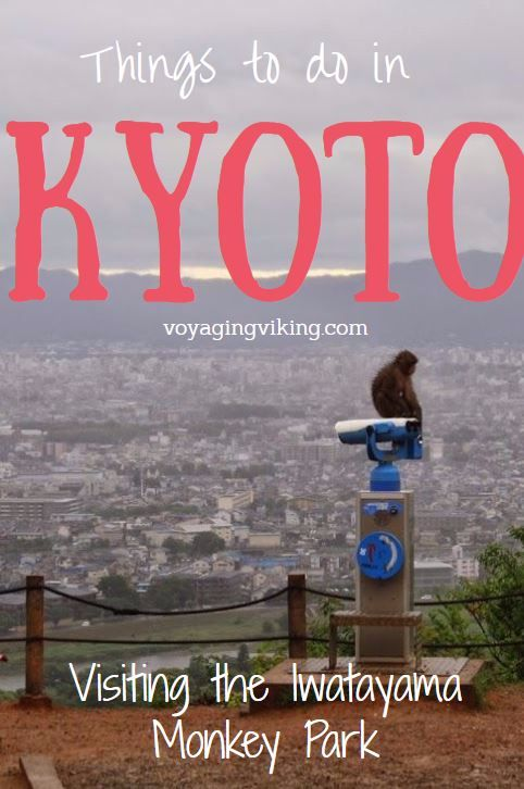 | Voyaging Viking | Things to do in Kyoto