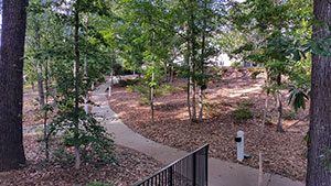 Picture of walkway to Dining Hall