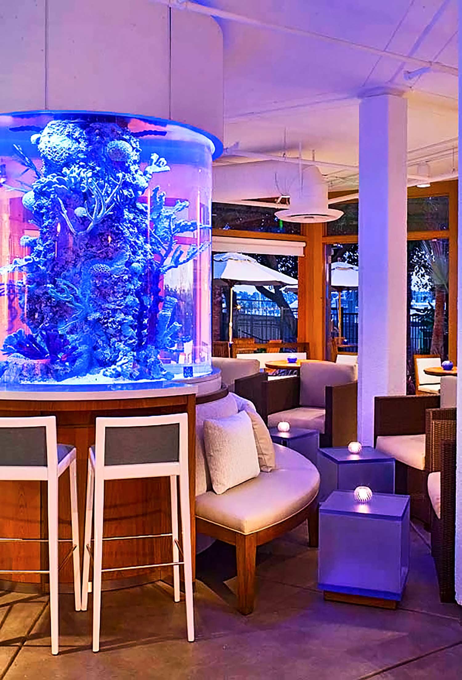 Aquariuam feature at Hyatt Regency Mission Bay