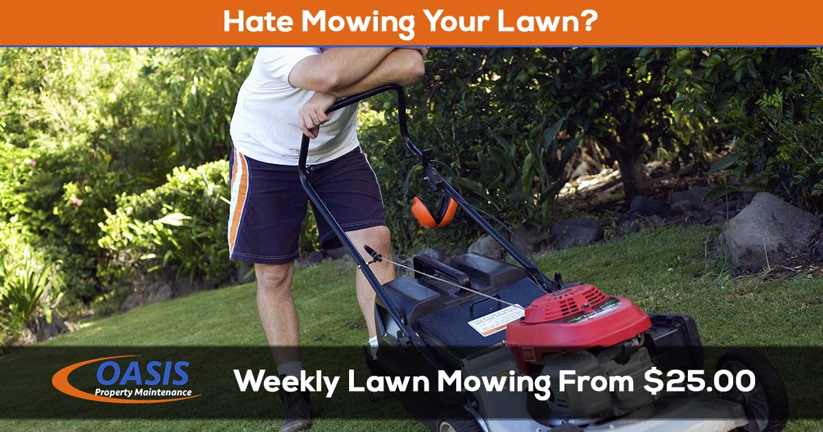 Lawn Mowing Service from $25 a week