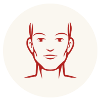 Head and Neck Cancers icon