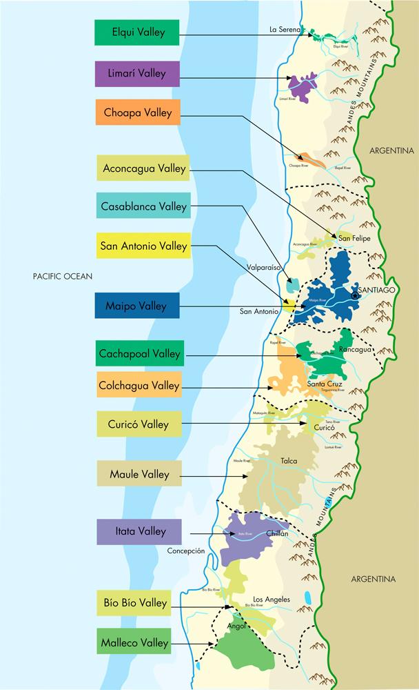 Chile Wine 3