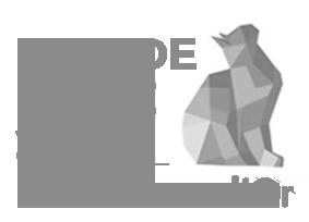 Les Chatons d'Or prix de l'idée 2015 Home Catalog by APAV