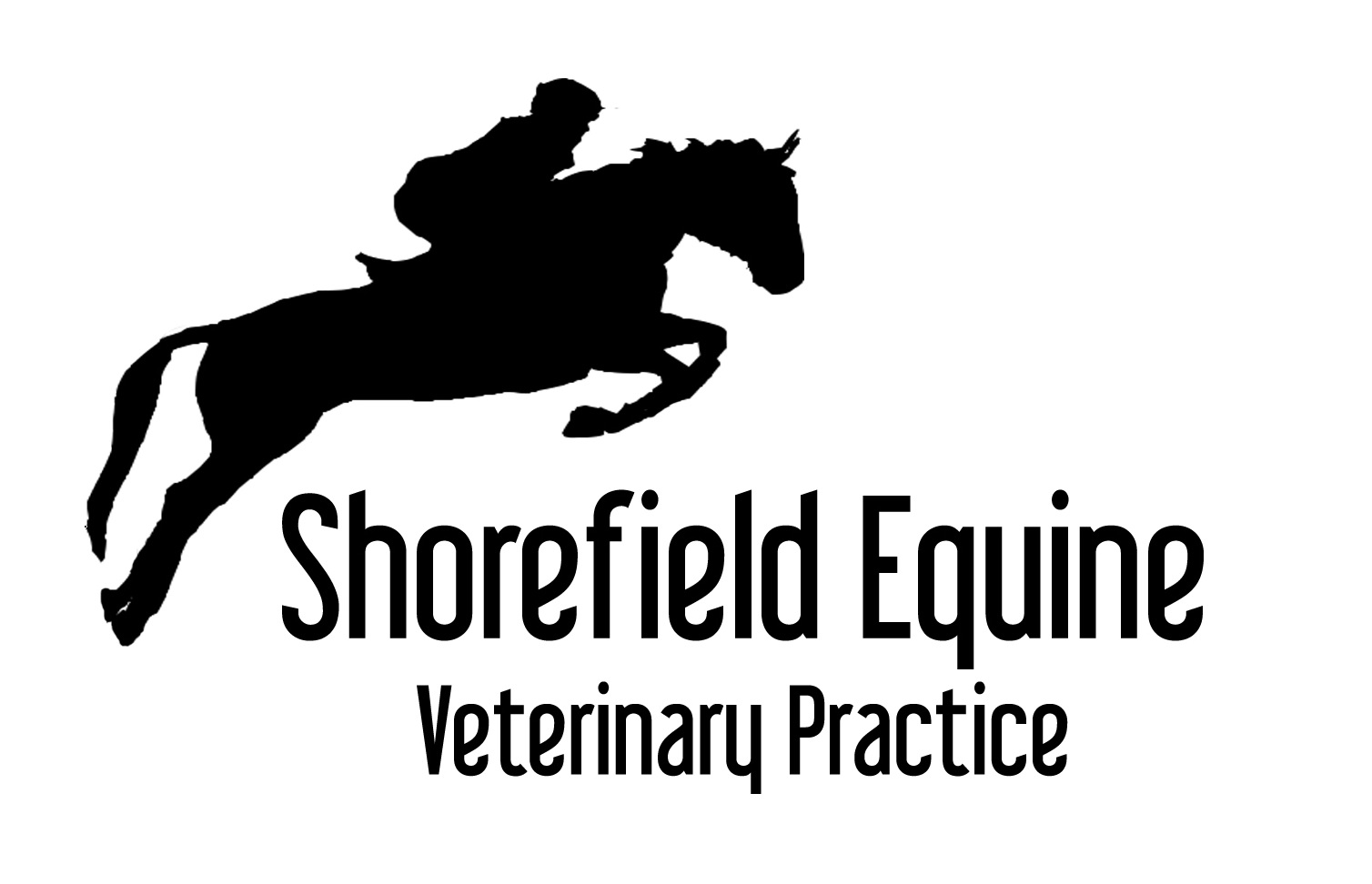 Shorefield Equine Vets