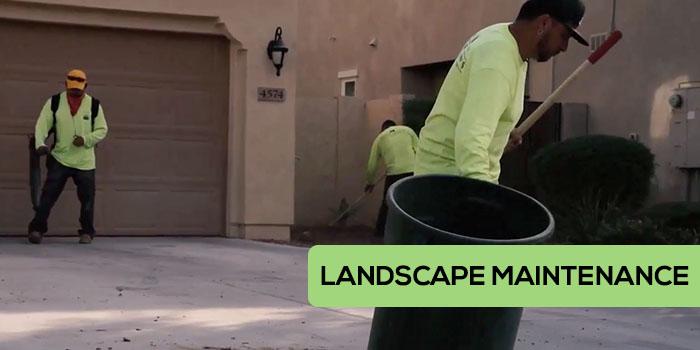 Little John's Lawns Landscape Maintenance in Gilbert, Mesa, and Chandler Arizona