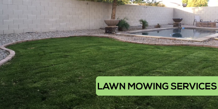 Little John's Lawn Mowing Services in Gilbert and Chandler Arizona