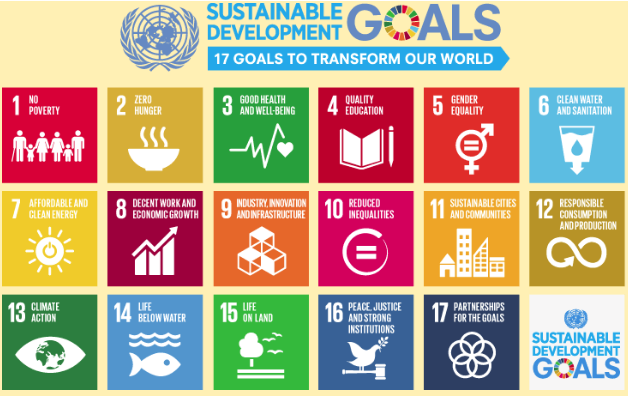Seventeen goals to transform our world, the Sustainable Development Goals encompass 169 targets and 230 indicators, and come with a price tag of $3-5 trillion per year.