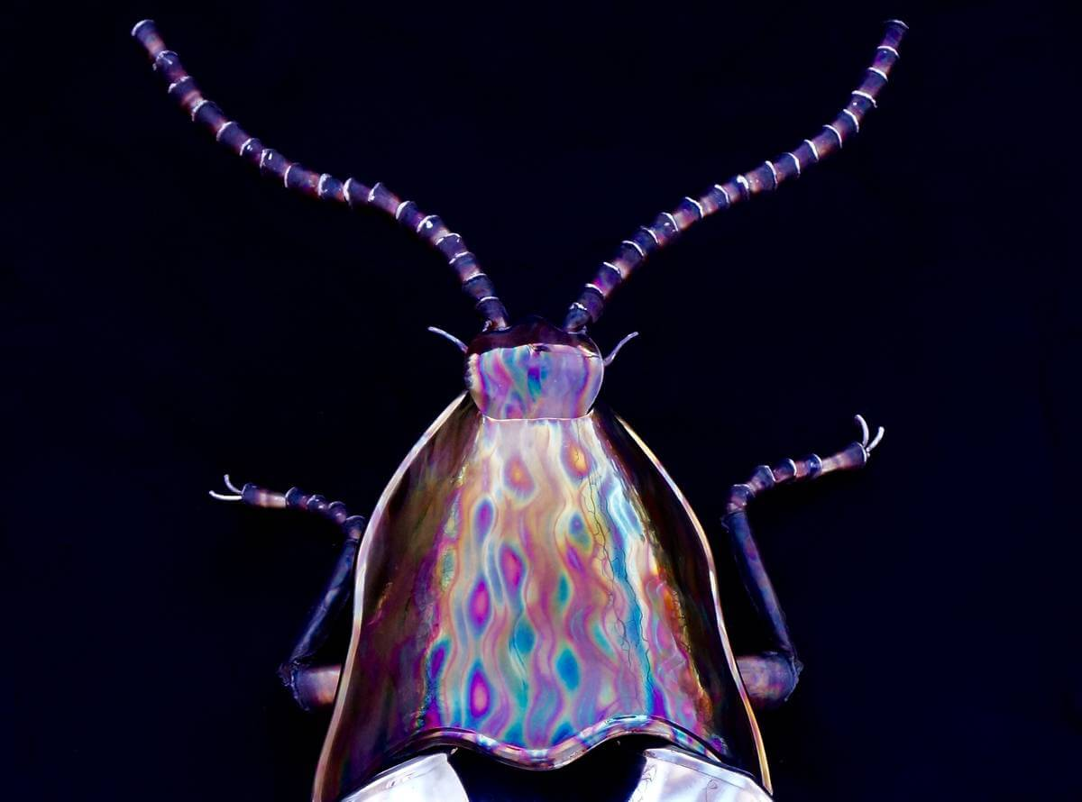 Close up of polished metal beetle sculpture