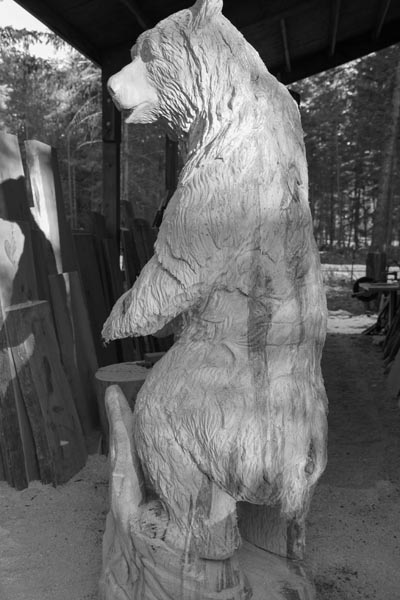 Grizzly In Progress