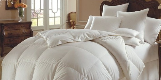 comfy_bed_003.jpg