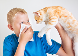 Child with Pet Allergies