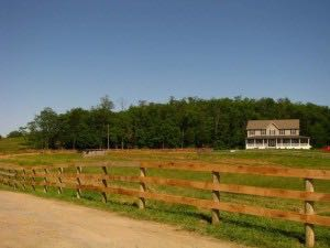 Board Fencing for Horses