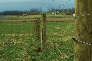 High Tensile Sheep Fence