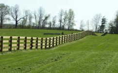 Board Fence for Cattle
