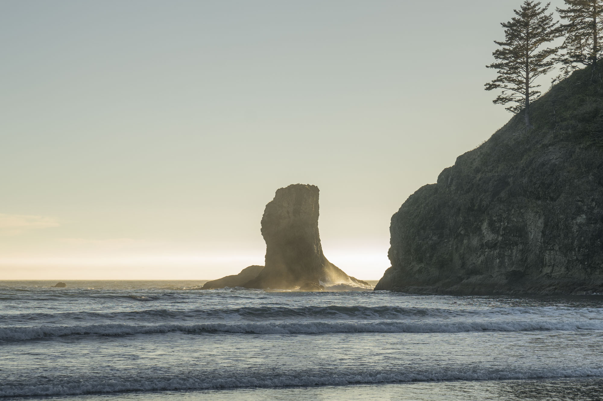 Rock in Olympic National Park.