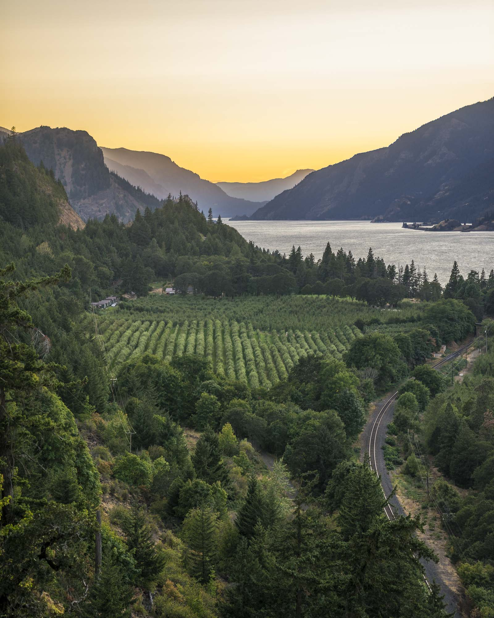 The golden hour lights up the Columbia River, wineries and mountains in Hood River, Oregon.