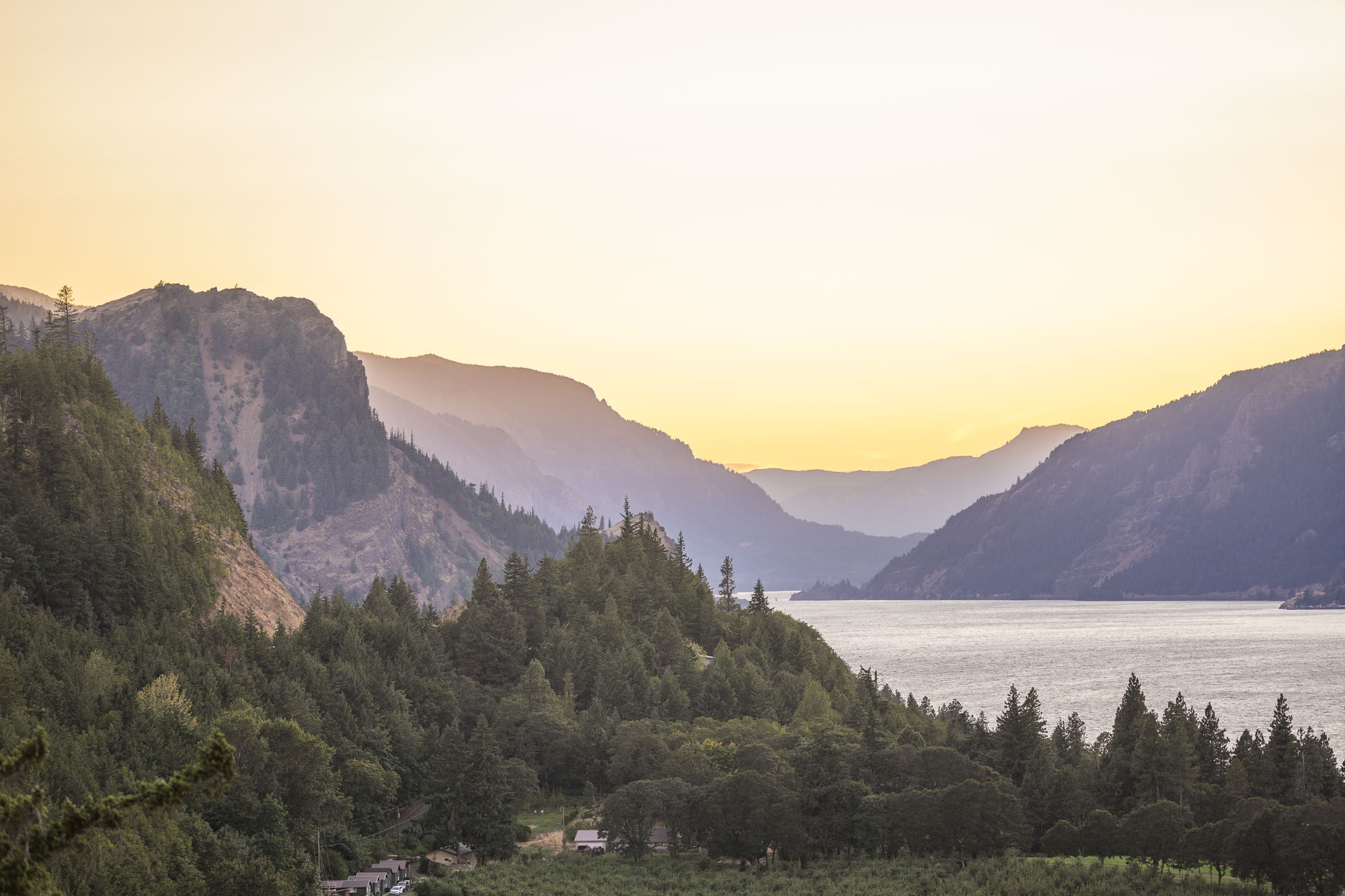 The Columbia River cuts through trees during the golden hour outside of Hood River, OR.