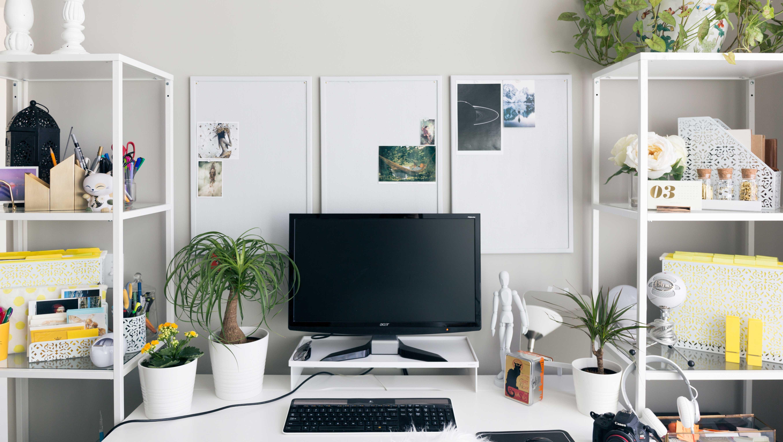 Escritório criativo com plantas de decoração.