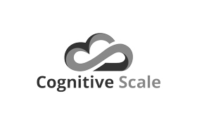 Cognitive Scale