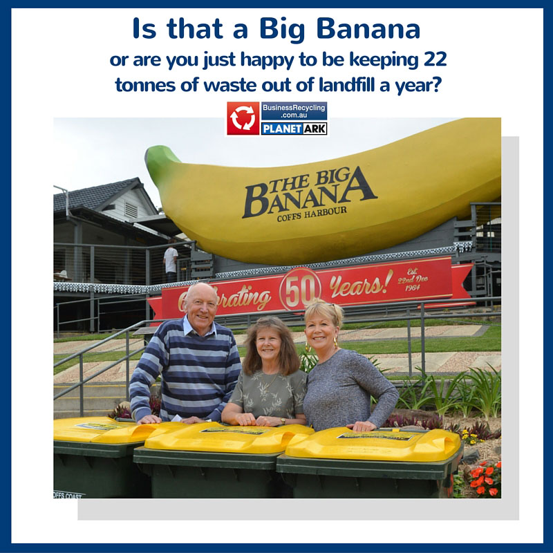 One of our Business Recycling case studies, The Big Banana.