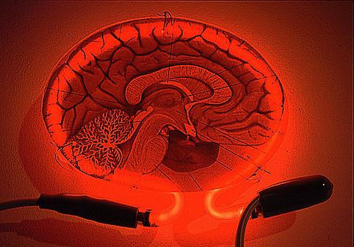 Pilcrow Neon Brain