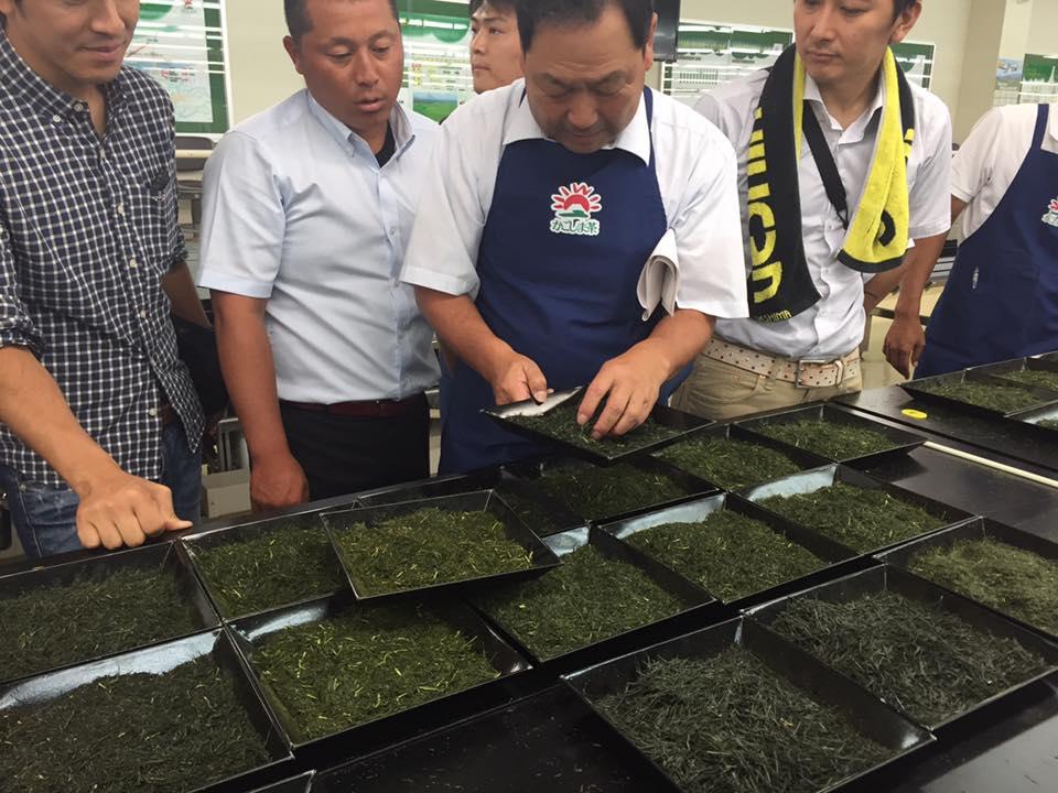 Chiran Green Tea contest